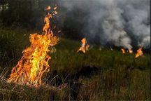 سنتی غلط که به خاک آسیب می زند  دود کاه و کلش به چشم محیط زیست مازندران می رود!