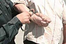 شکارچی غیرمجاز در تاکستان دستگیر شد
