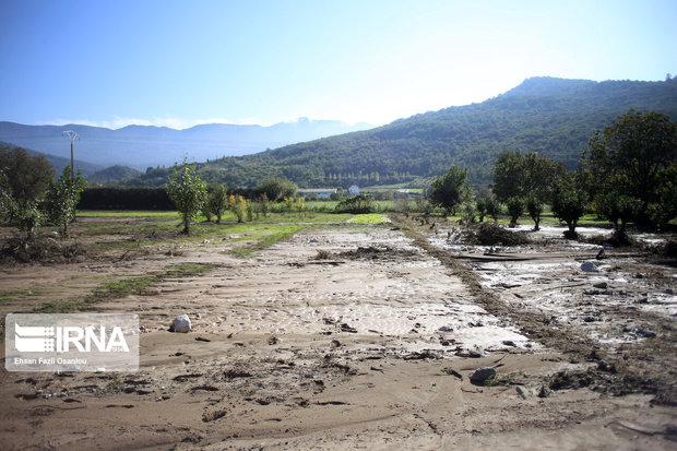 خسارت سیل شرق مازندران به بخش کشاورزی ۲۳۲ میلیارد ریال برآورد شد
