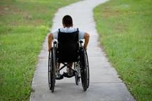 یک سوم معلولان زیر پوشش بهزیستی مشهد معلول جسمی هستند