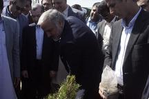 ترویج فرهنگ درخت کاری لازمه توسعه فضای سبز شهری است