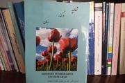 بررسی تاریخ  محلی در کتاب «شهابیه در گذر زمان»