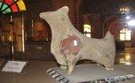 موزهها و اماکن تاریخی از فردا باز می شوند