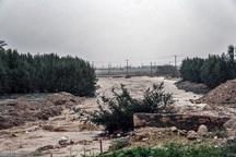 باران سیل آسا جاده 40 روستای دیشموک را قطع کرد