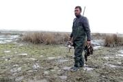شکار پرندگان وحشی در شرق مازندران ممنوع شد