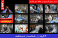 جدیدترین اخبار رسمی از کرونا در ایران/ تعداد جان باختگان به 3036 نفر، بهبودی ها 15473 تن و  مبتلایان 47593 نفر رسید