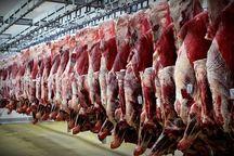 سالانه ۴۳ هزار تن گوشت قرمز در قم تولید میشود