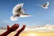 مددجوی زندانی با کمک زرگر یزدی آزاد شد