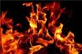 دستگیری عامل آتش سوزی عمدی در تنکابن