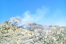 آتش سوزی جنگل های الوار اندیمشک مهار شد