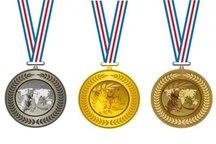 قهرمانان و مدال آوران بین المللی قم تجلیل شدند