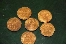 هشت سکه تاریخی در بم کشف شد
