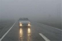 بارش برف و مه غلیظ در گردنه کوهین استان قزوین