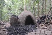 ۶ کوره زغال در جنگلهای آستارا تخریب شد
