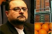 آغاز ارسال محمولههای پرتقال طرح تنظیم بازار میوه به استانهای مختلف کشور