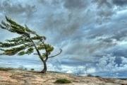 احتمال بارش های پراکنده درگلستان  دمای هوا کاهش می یابد