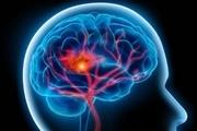 توانایی های اصلی مغز با افزایش سن بهبود می یابد