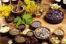 هزار و ۴۵۰ تن گیاهان دارویی به خارج از کشور صادر شد