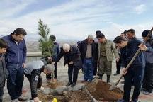 5000 اصله نهال طی هفته منابع طبیعی در خوی غرس شد