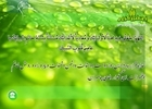دعای روز بیست و پنجم ماه مبارک رمضان+متن، صوت و ترجمه