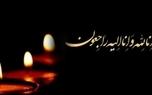 حسین رسام از دنیا رفت