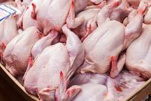 سهمیه توزیع گوشت مرغ استان بوشهر افزایش یافت