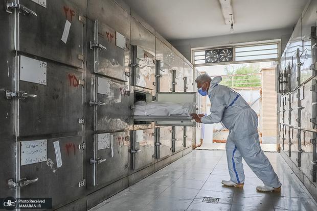 تعداد فوتی ها بر اثر کرونا در ایران 194 هزار نفر است/ ممکن است آمار به روزی 830 فوتی هم برسد