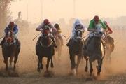رقابت ۵۷ راس اسب در روز دوم هفته سوم مسابقات کورس پاییزه گنبدکاووس