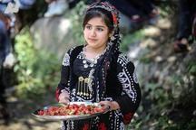 نوعروس کردستان در پی ماه عسل