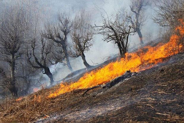 70 هکتار از مراتع شیمبار در آتش سوخت