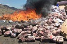 بیش از یک هزار کیلوگرم مواد غذایی فاسد در فسا معدوم شد