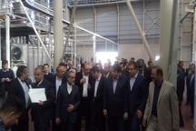 آغاز بکار واحد تولیدی کاشی در میبد با حضور وزیر صنعت