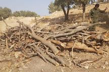 یکهزار و 664 گزارش مردمی در سامانه منابع طبیعی زنجان ثبت شد