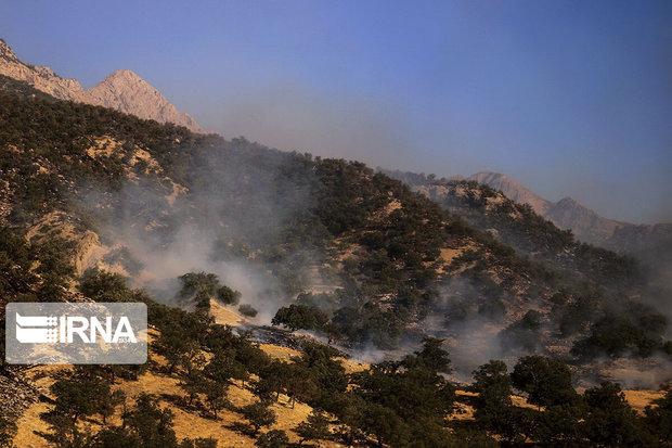 آتش در منطقه الگی اندیکا شعله ور شد