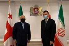 ظریف با نخست وزیر گرجستان گفت و گو کرد