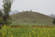 ششمین فصل پژوهشهای باستانشناسی جنوب کرمان آغاز شد