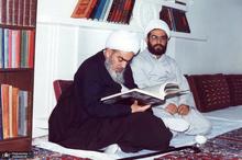 از زندگی آیت الله العظمی محمد فاضل لنکرانی چه می دانید؟
