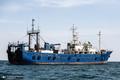 کشتی های چینی این بار شبانه کف خلیج فارس را جارو می کنند!/ صید گله ای ماهی 50 میلیونی با ردیاب
