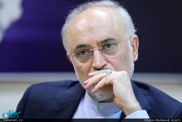 علی اکبر صالحی از ثبت نام در انتخابات منصرف شد