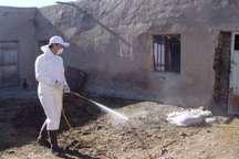 سمپاشی 30هزار راس دام و 200 هزار متر مربع جایگاه دام در کردستان