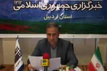 91 طرح گازرسانی روستایی استان اردبیل به بهره برداری می رسد