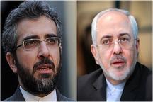 دیدار و گفت وگوی ظریف با دبیر ستاد حقوق بشر قوه قضاییه