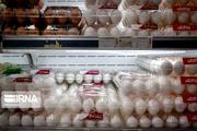 تولید ۱۸ هزار و ۵۰۰ تن تخممرغ در همدان