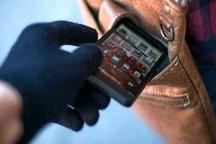 موبایل قاپ حرفه ای در فردیس به 23 فقره سرقت اعتراف کرد