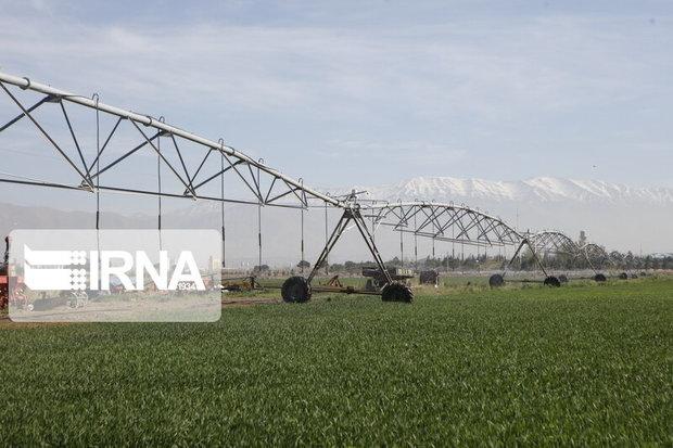 تجهیز بیش از ۳۱ هزار هکتار از اراضی جنوب کرمان به سامانههای نوین آبیاری