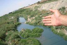 ۱۸۰ هکتار از محدوده کشف رود درختکاری شد