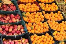 17 تن میوه شب عید در چاراویماق توزیع می شود