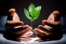 صندوق حمایت از توسعه کشاورزی شهرستان ابهر تشکیل شد