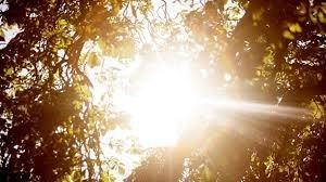 گرمای هوا در استان یزد به 47 درجه رسید