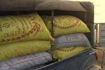 30 کیسه زغال غیر مجاز بلوط در شهرستان کوهدشت کشف و ضبط شد